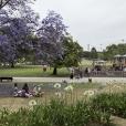 fotografia do jardim vasco da gama, com o parque infantil e o arvoredo circundante